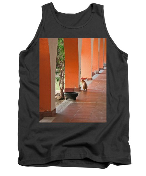Tank Top featuring the photograph El Gato by Marcia Socolik