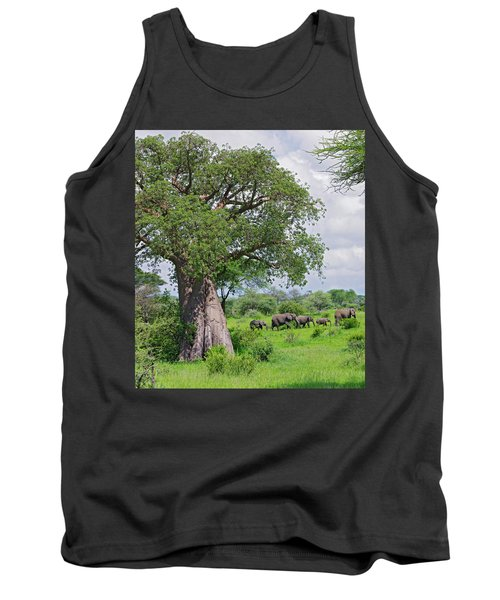 Elephants Walking Past Large Baobob Tank Top