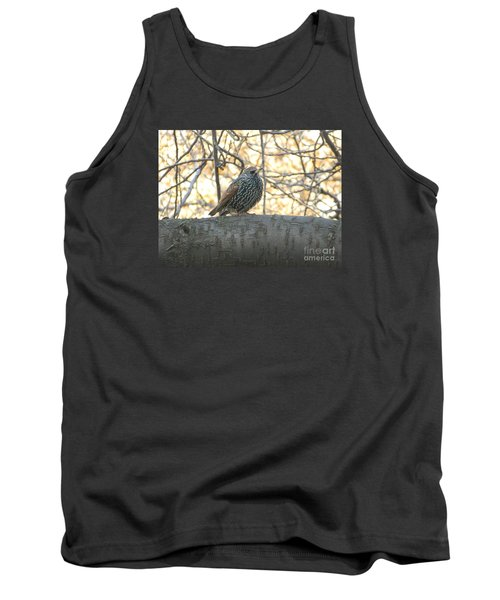 Tank Top featuring the photograph European Starling by Emmy Marie Vickers