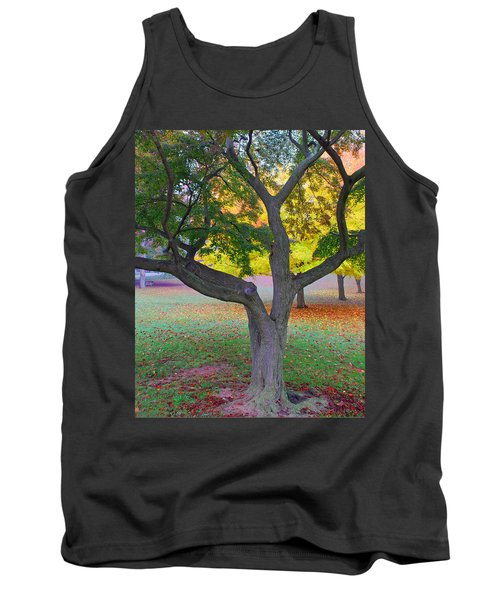 Tank Top featuring the photograph Fall Color by Lisa Phillips