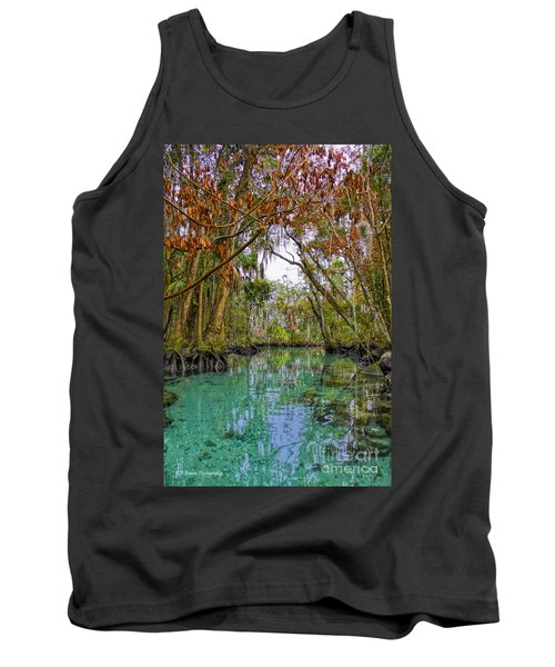 Fall Colors Along Three Sisters Spring Run Tank Top