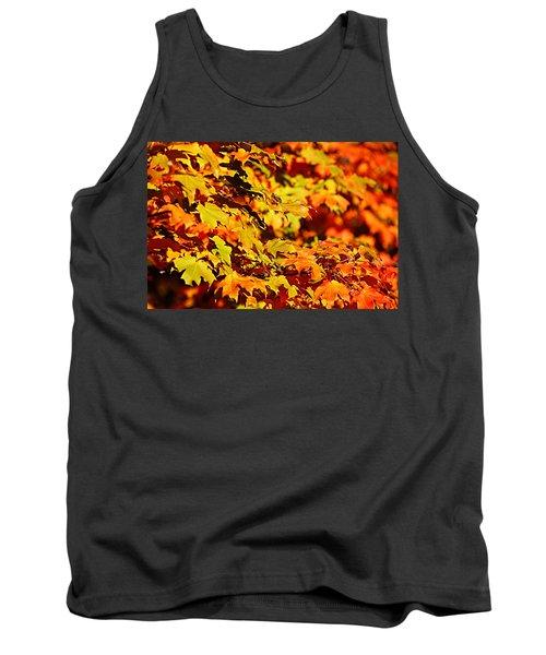 Fall Foliage Colors 13 Tank Top