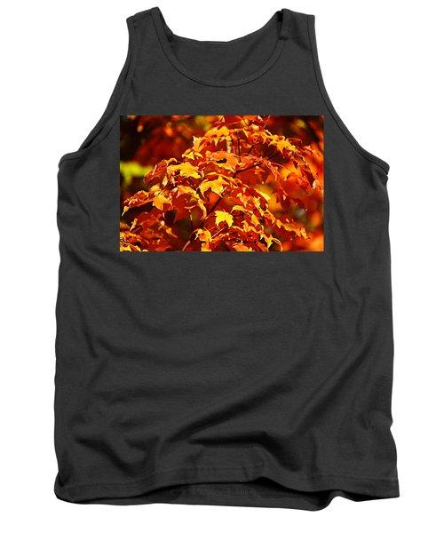 Fall Foliage Colors 14 Tank Top