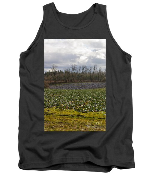 Field Of Color 2 Tank Top by Belinda Greb