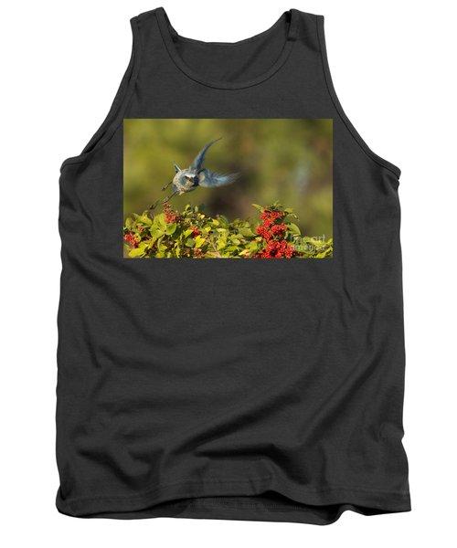 Flying Florida Scrub Jay Photo Tank Top