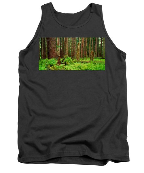 Forest Floor Olympic National Park Wa Tank Top