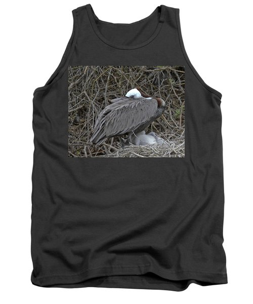 Galapagos - Watchful Pelican Tank Top