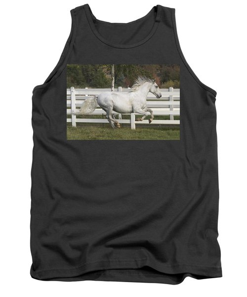 Tank Top featuring the photograph Glorious Gunther D2972 by Wes and Dotty Weber