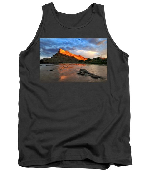 Tank Top featuring the photograph Golden Highlights by Ronda Kimbrow