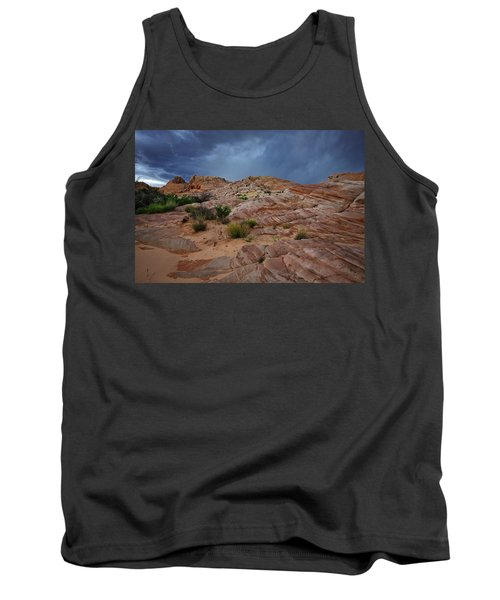Gray And Red In The Valley Of Fire Tank Top