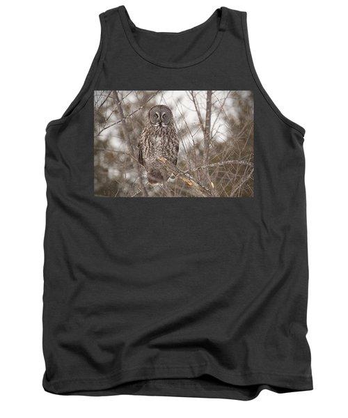 Great Grey Owl Tank Top