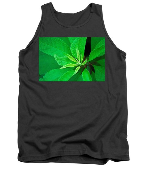 Green Tank Top by Ludwig Keck