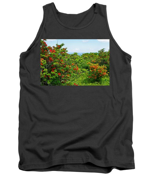 Gregory Bald Tank Top by Melinda Fawver