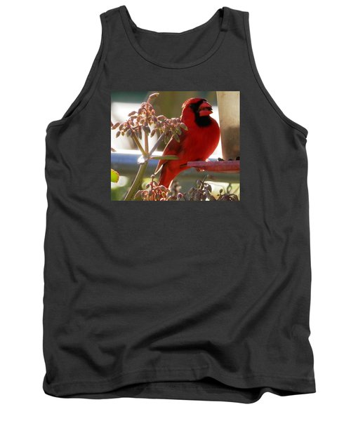 Handsome Red Male Cardinal Visiting Tank Top