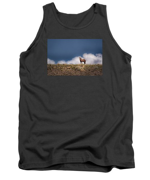Horse In The Clouds  Tank Top by Janis Knight