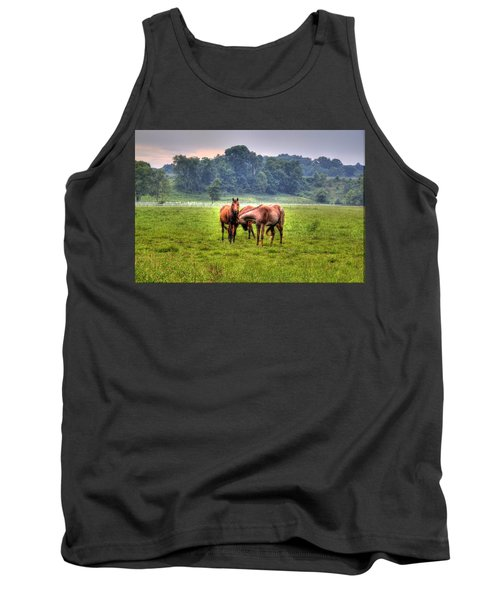 Horses Socialize Tank Top by Jonny D