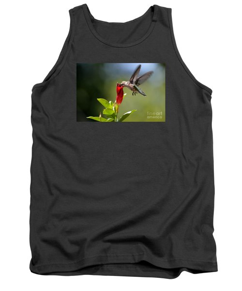 Hummingbird Dipping Tank Top by Debbie Green