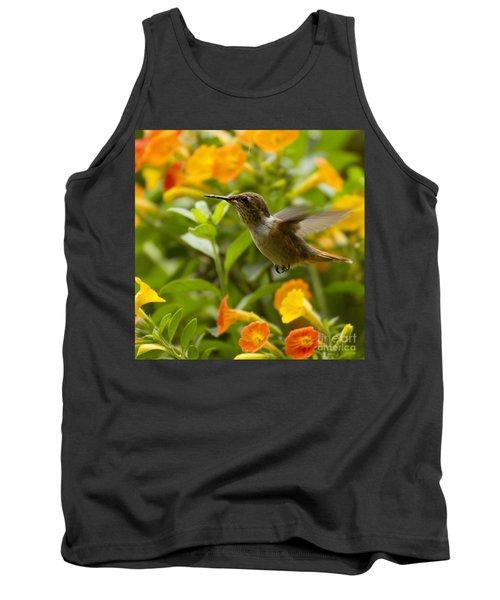 Hummingbird Looking For Food Tank Top