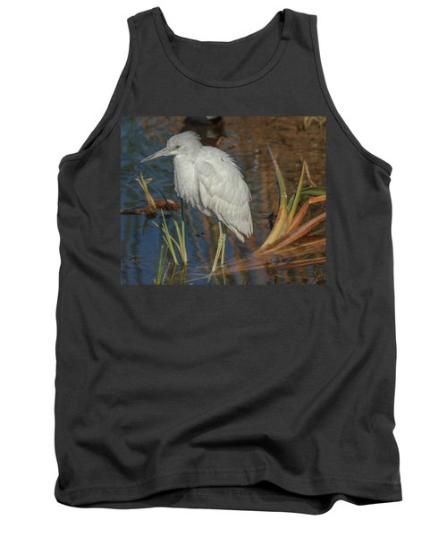 Immature Little Blue Heron Tank Top by Jane Luxton