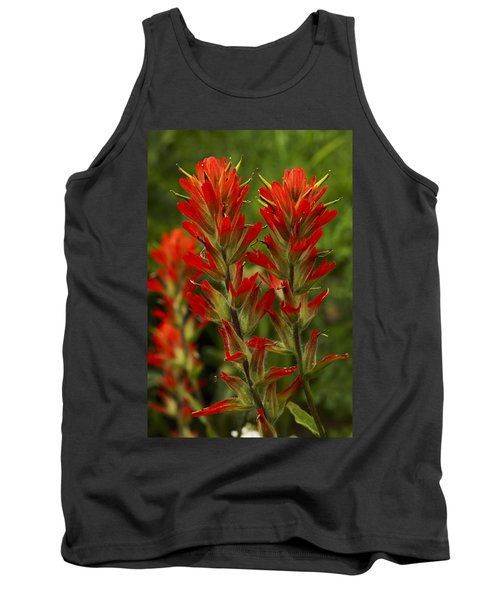 Indian Paintbrush Tank Top by Alan Vance Ley