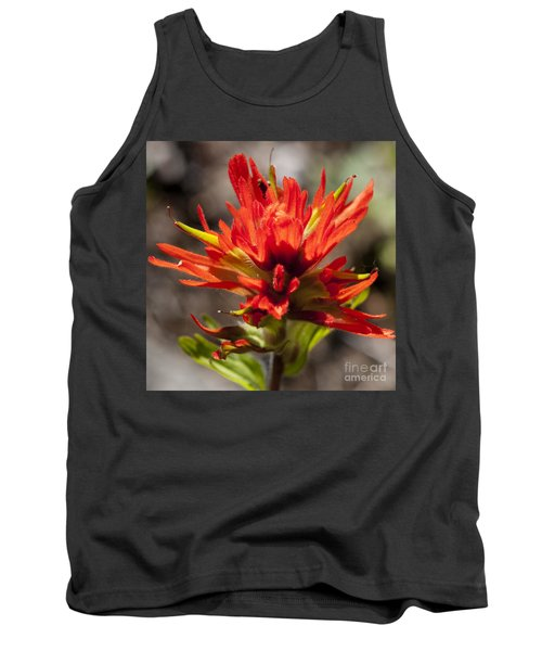 Indian Paintbrush Tank Top by Belinda Greb
