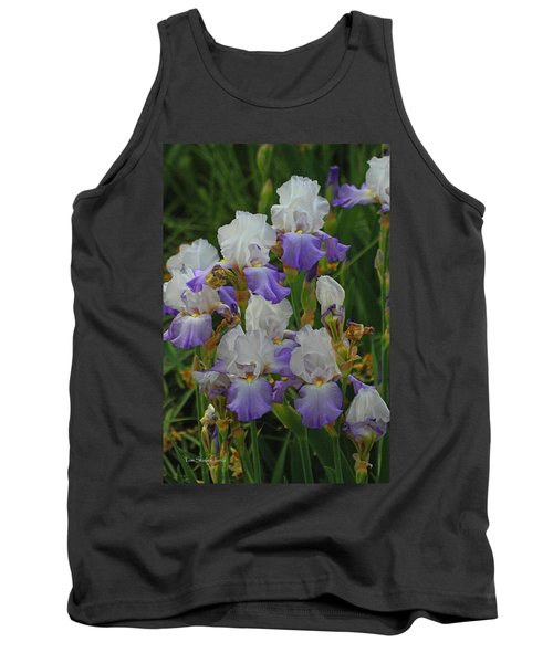 Iris Patch At The Arboretum Tank Top