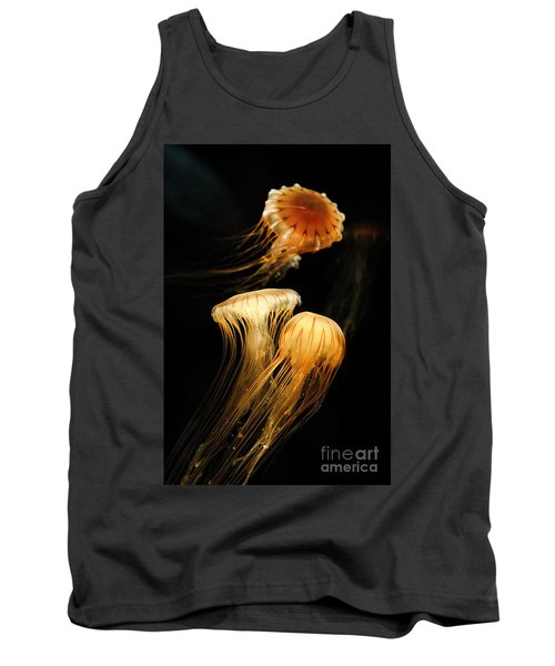 Jellyfish Trio Floating Against A Black Tank Top