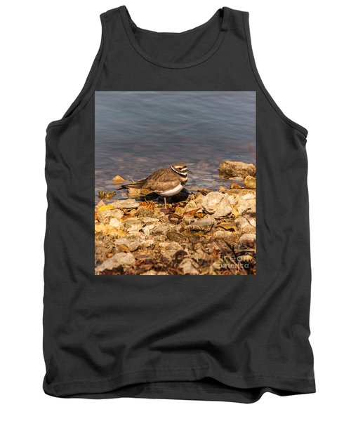 Kildeer On The Rocks Tank Top by Robert Frederick
