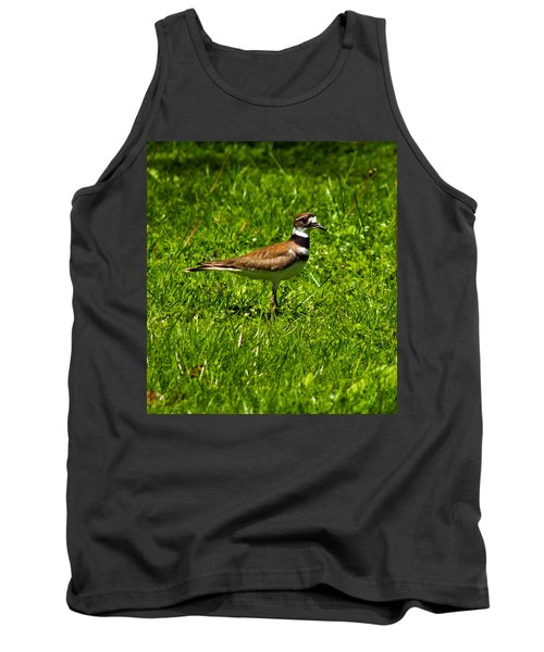 Killdeer Charadrius Vociferus 2 Tank Top by Howard Tenke