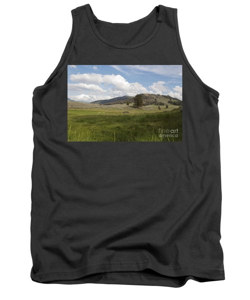 Lamar Valley No. 2 Tank Top by Belinda Greb