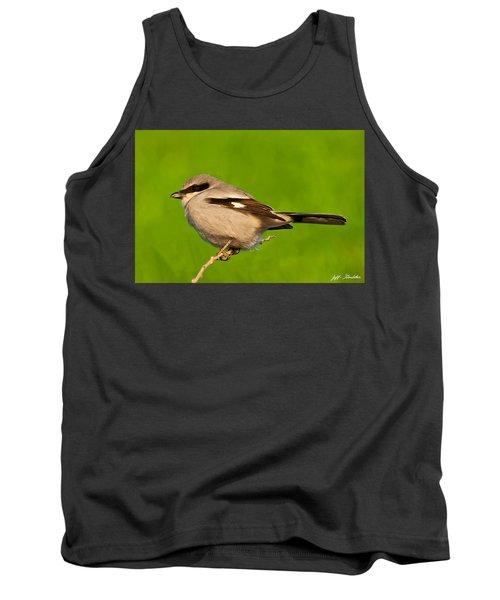 Loggerhead Shrike Tank Top