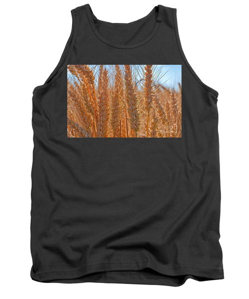 Tank Top featuring the photograph Macro Of Wheat Art Prints by Valerie Garner