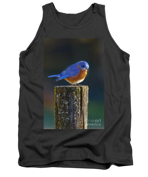 Male Bluebird Tank Top