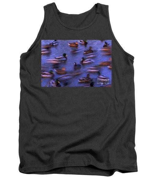Mallard Ducks Swimming Tank Top
