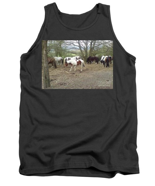 May Hill Ponies 2 Tank Top