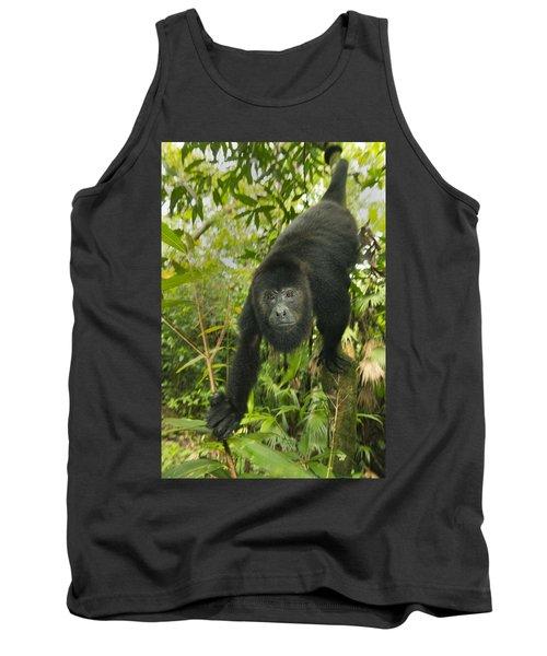 Mexican Black Howler Monkey Belize Tank Top