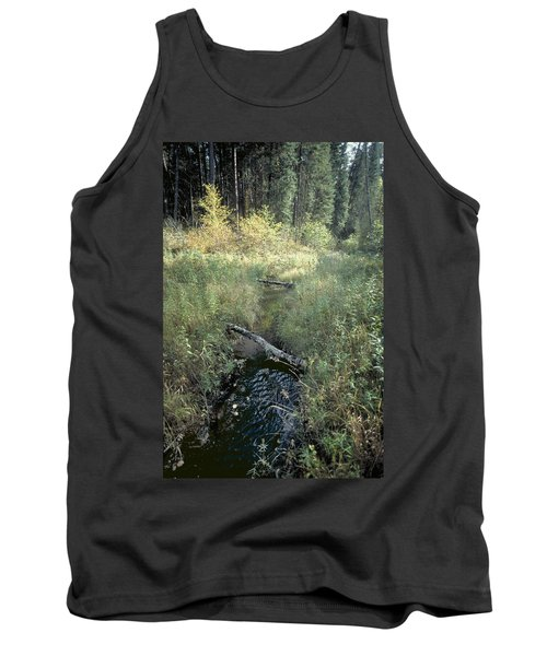 Mississippi River Headwaters Tank Top by Garry McMichael