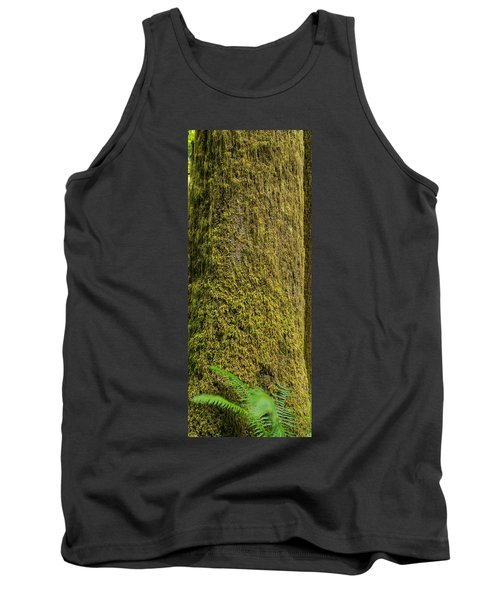 Moss Covered Tree Olympic National Park Tank Top by Steve Gadomski