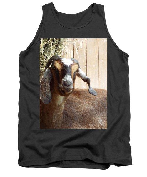 Nubian Goat Tank Top