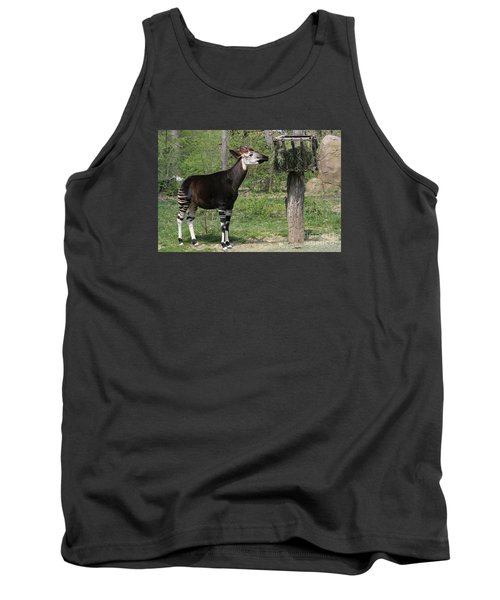 Okapi Tank Top by Judy Whitton