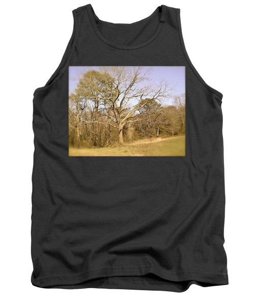 Old Haunted Tree Tank Top by Amazing Photographs AKA Christian Wilson