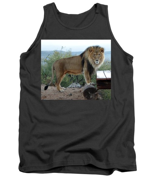 Out Of Africa  Lion 1 Tank Top