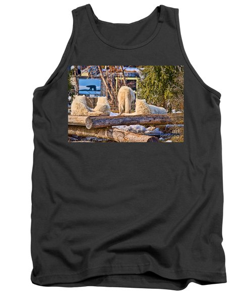 Pack Of Arctic Wolves Watching A Polar Bear Movie Tank Top