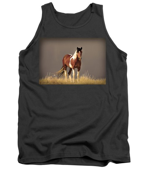 Paint Filly Wild Mustang Sepia Sky Tank Top