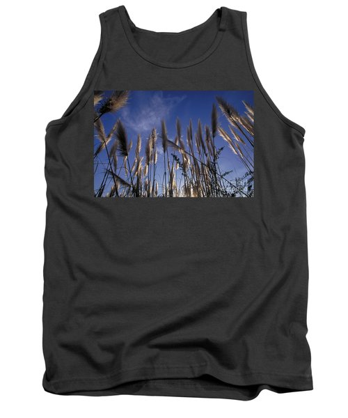 Pampas Grass Against The Sky Tank Top