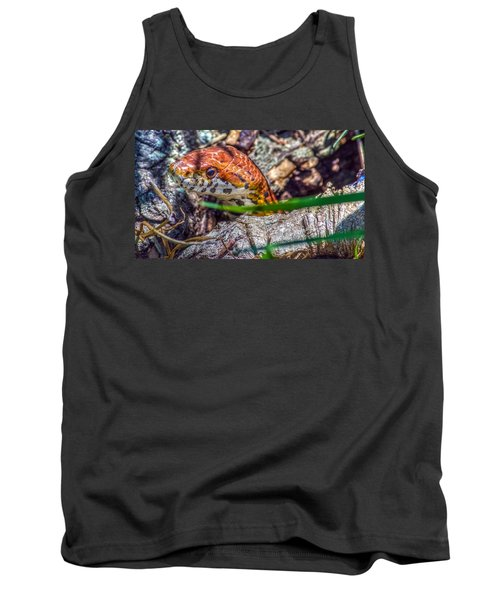Pantherophis Guttatus Tank Top by Rob Sellers