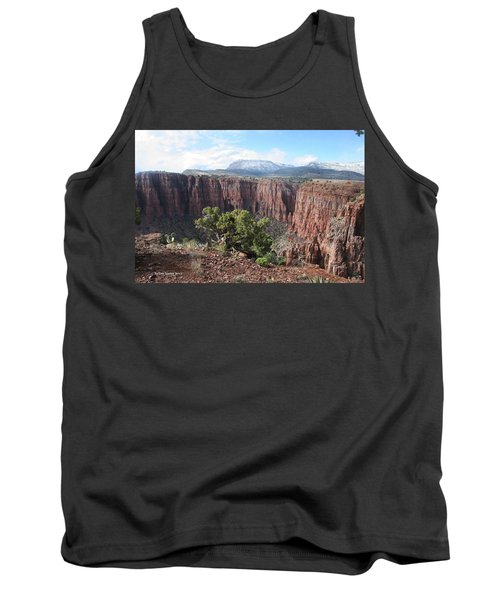 Tank Top featuring the photograph Parker Canyon In The Sierra Ancha Arizona by Tom Janca