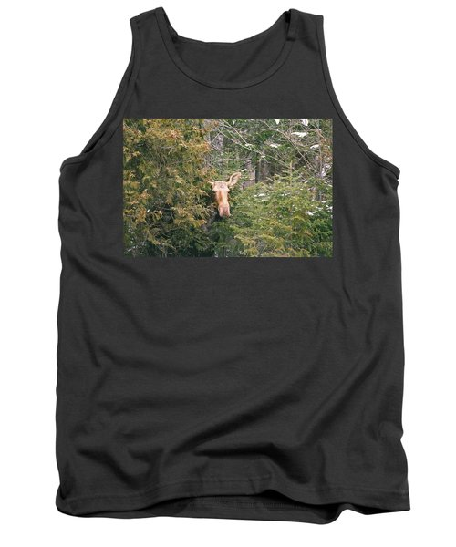 Tank Top featuring the photograph Peek-a-boo by David Porteus