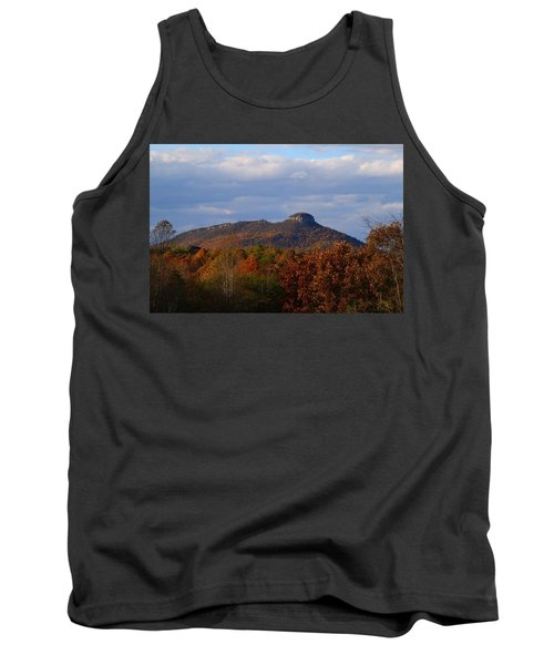 Pilot From Perch Road Tank Top by Kathryn Meyer