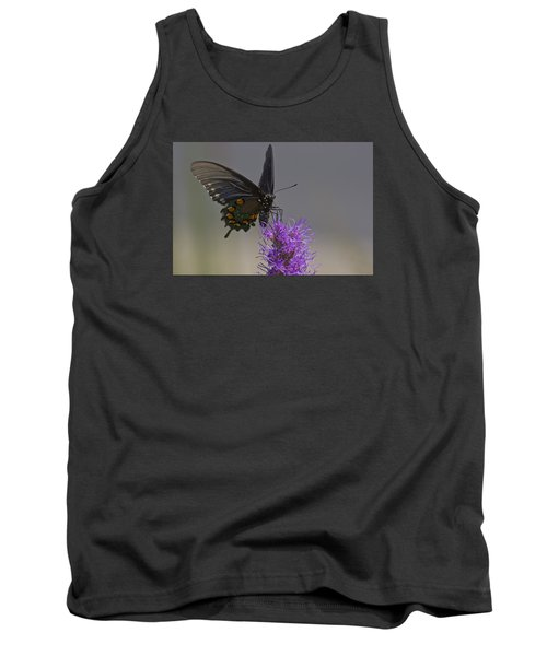 Pipevine Alights Tank Top